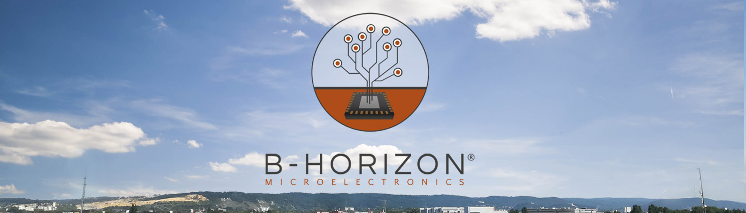 The B-Horizon logo with the horizon of the city of Regensburg in the background, where the company is located and was founded. The B-Horizon logo shows a microchip in grey and black with brown conducting paths that remind of a tree rising up from the ground. B-Horizon's vision is symbolized by the logo and the company's name and represents the most crucial soil layer for vegetation and flora: the B horizon. This well-developed subsoil provides the roots with essential ingredients to grow and spread their vitality. It is our vision to offer effective support and fruitful solutions to our clients which would pave the way to a successful market launch of our customers' innovative products.